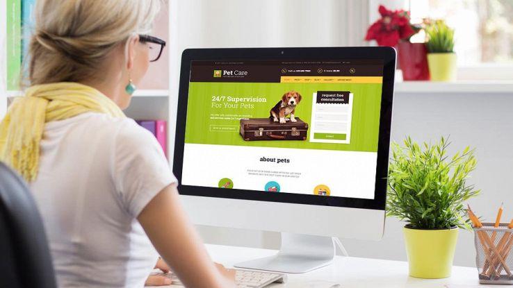 Come creare un sito di un pet service