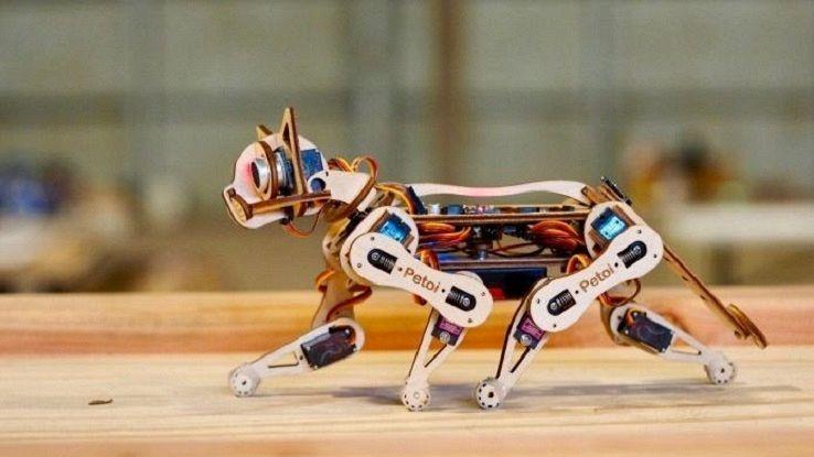 un'immagine dl gatto robotico Nybble
