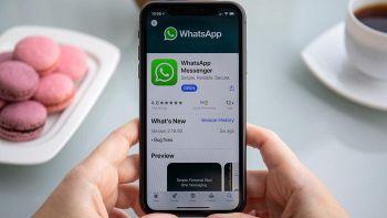 WhatsApp, grave problema: i numeri degli utenti disponibili su Google