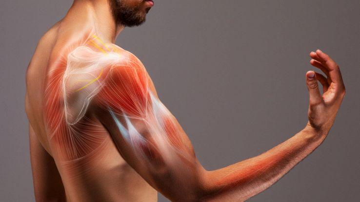 robot-tessuto-muscolare