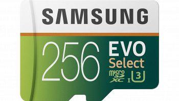 Samsung MB-ME256HA Evo Select da 256 GB