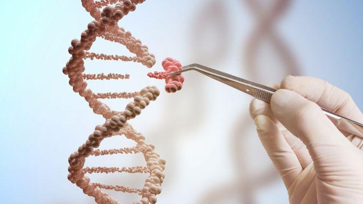 L'elisir di lunga vita è nel DNA