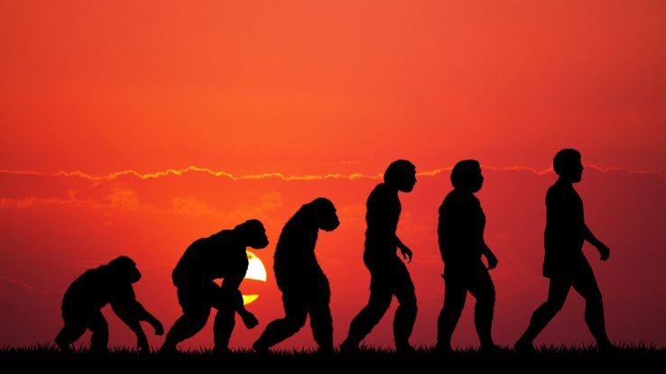 Come sta evolvendo l'uomo