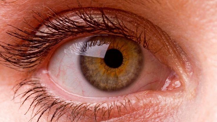 Si può davvero alterare volontariamente la dimensione delle pupille