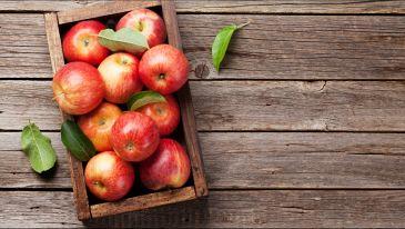 La frutta di settembre