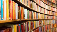 Libri dai dorsi colorati appoggiati in fila su mensole in legno chiaro di una libreria