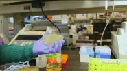 Coronavirus: l'Italia è prima in Europa per numero di contagi