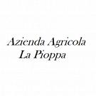 Azienda Agricola La Pioppa Vendita di Vini Agriturismo
