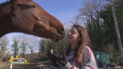 La soprano che sussurra ai cavalli