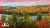 """""""Il Canada e i suoi colori"""""""