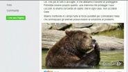 Salvate l'orsa del Trentino