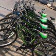 CURIOSITA biciclette