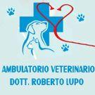 Lupo Dr. Roberto