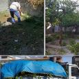 IMPRESA DI PULIZIE E SERVIZI MANUTENSERVICE NAPOLI Manutenzione aree verdi Napoli