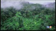 Proteggiamo l'ambiente, sviluppo senza sfregi