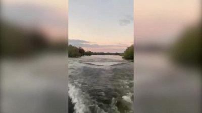 Ippopotamo insegue turisti, il video spaventoso dalla barca
