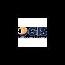 Gis International