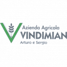 Vivai Azienda Agricola Vindimian