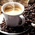 BAR LA FENICE bar e caffè