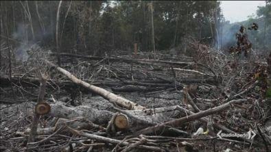 Inferno Amazzonia al centro del G7