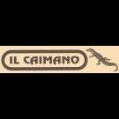 Il Caimano