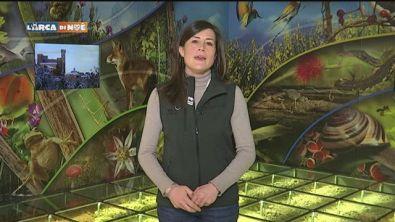 Monticiano: il museo multimediale della biodiversità