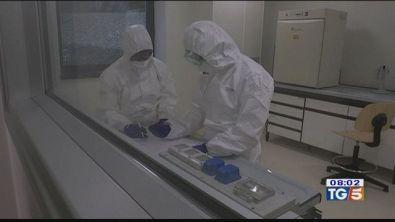 Più di duemila vittime Virus, verso il picco