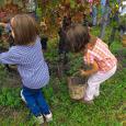 attività in giardino