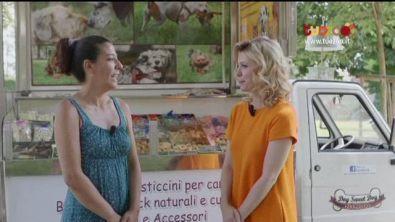 Dog sweet dog: torte e pasticcini per cani