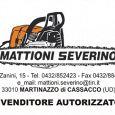 MACCHINARI AGRICOLI Mattioni Severino Motocoltivatori