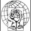 Dimension Flowers - Servizio Interflora