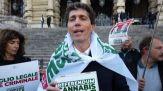 In Cassazione 630.000 firme, ora il Referendum su Cannabis Legale