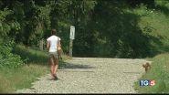 Passeggia col cane, violentata al parco