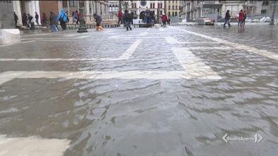 Sale la marea, Venezia in pericolo