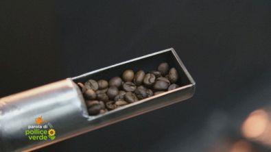 Caffè made in Sicily
