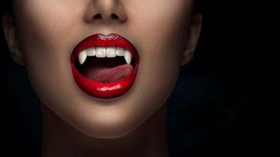 La vera storia della contessa Dracula