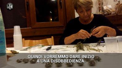 Rita Bernardini distribuisce cannabis