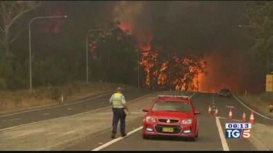 Emergenza roghi e polemiche in Australia