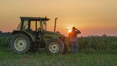 Il contadino sposta una pietra nel campo e succede una cosa incredibile