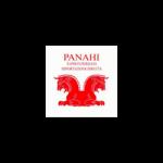 Tappeti Persiani Panahi Amir