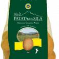 PATATA DELLA SILA IGP produzione patate