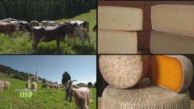 Il formaggio di San Sebastiano