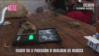 Viaggio tra le piantagioni di marijuana del Marocco