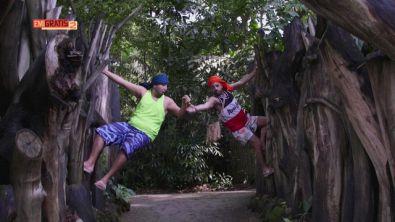 In visita allo zoo di Singapore