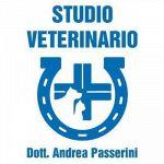 Passerini Dr. Andrea