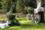 Corazzin Bike