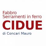 Cidue  Concari Mauro