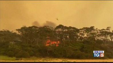 Il fuoco non si ferma, catastrofe Australia