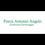 Porcu Antonio Angelo