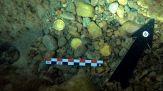 Trovano antiche monete romane: la scoperta incredibile